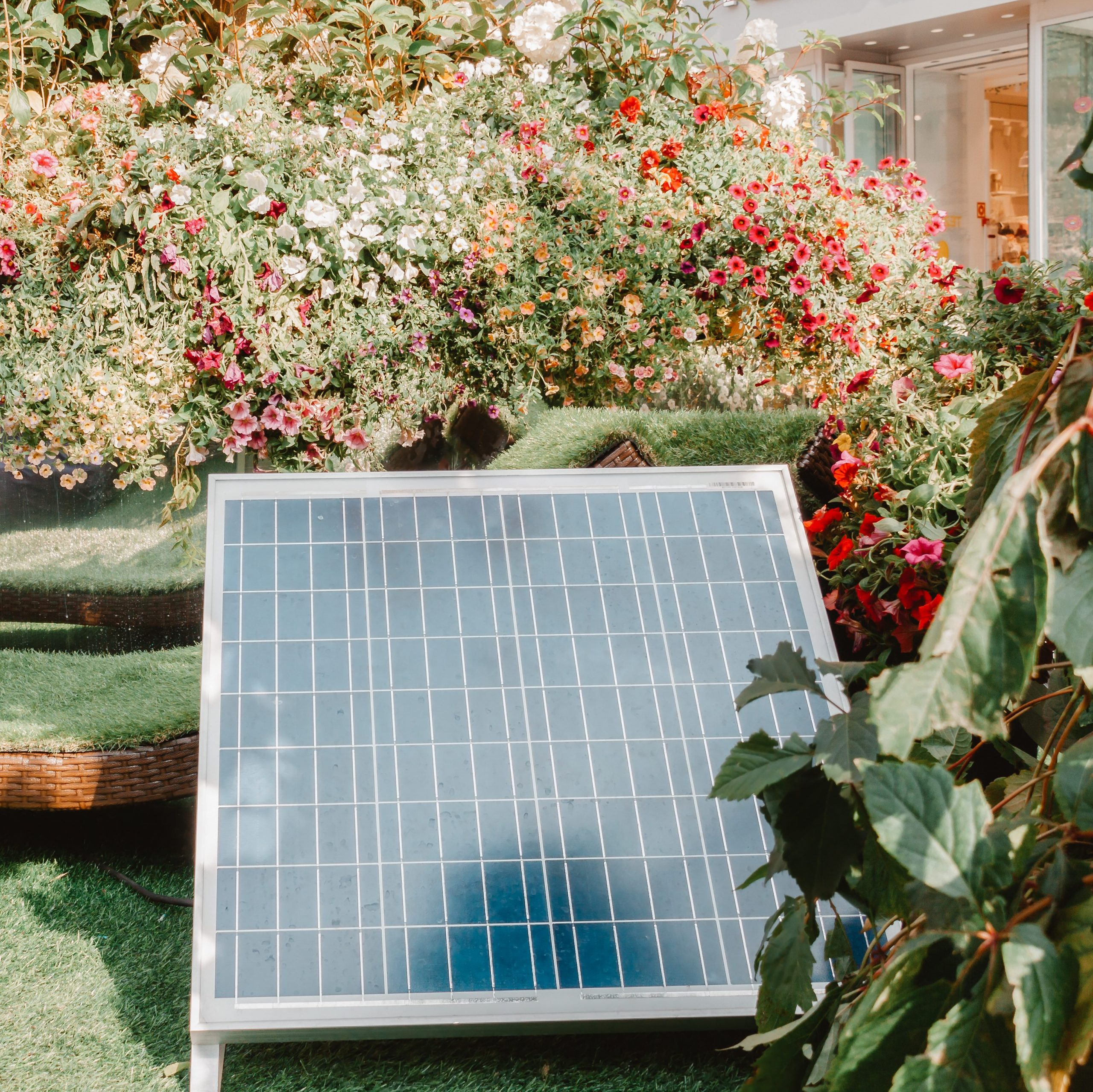 Solar cell in back or front house yard with trees and flowers warm sunny spring or summer day.
